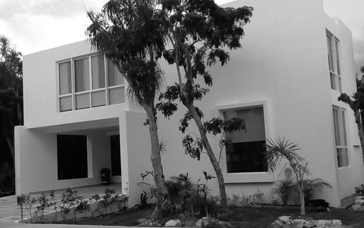 Foto de terreno habitacional en venta en  , paamul, solidaridad, quintana roo, 2015656 No. 05