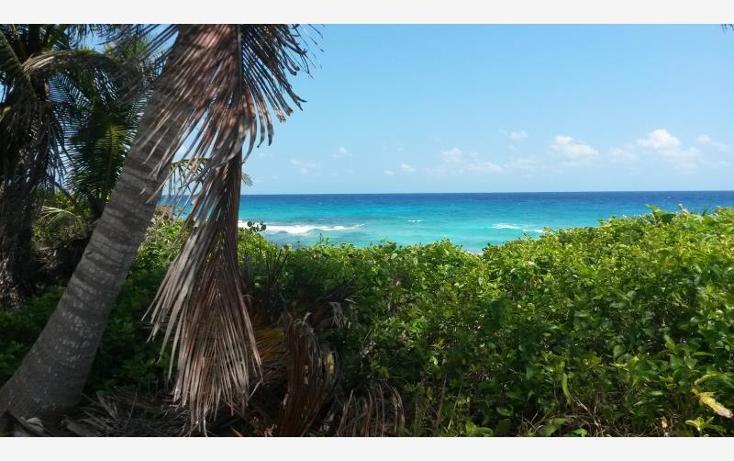 Foto de terreno comercial en venta en carretera federal puerto aventuras - playa de carmen , paamul, solidaridad, quintana roo, 522641 No. 07