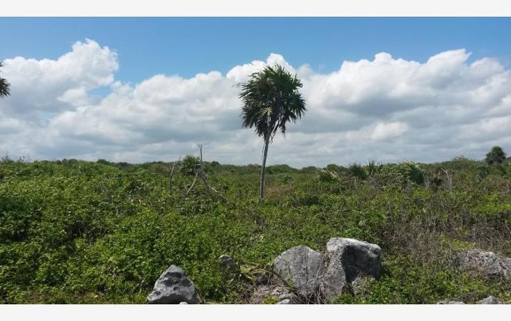 Foto de terreno comercial en venta en carretera federal puerto aventuras - playa de carmen , paamul, solidaridad, quintana roo, 522641 No. 08