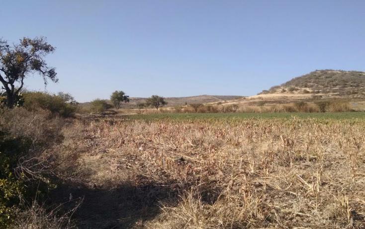 Foto de terreno habitacional en venta en  , pabileros, silao, guanajuato, 2622469 No. 01
