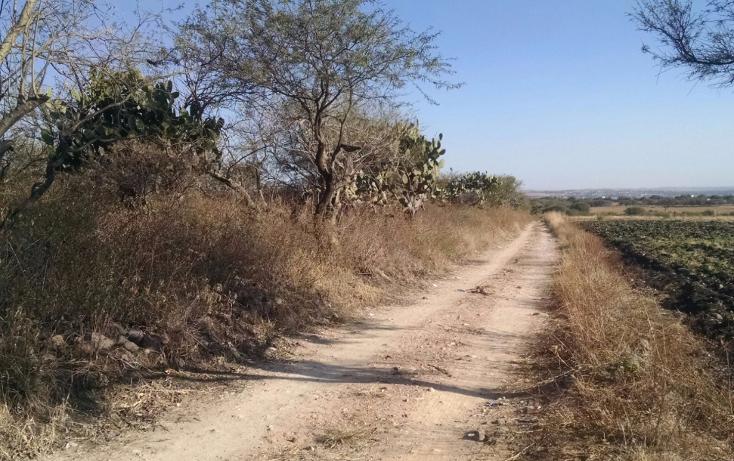 Foto de terreno habitacional en venta en  , pabileros, silao, guanajuato, 2622469 No. 02
