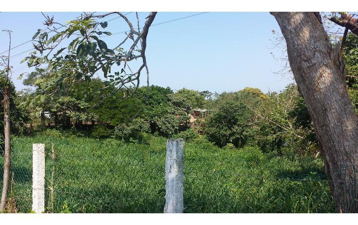 Foto de terreno habitacional en venta en  , pajaritos, coatzacoalcos, veracruz de ignacio de la llave, 1833868 No. 02