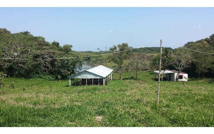 Foto de terreno habitacional en venta en  , pajaritos, coatzacoalcos, veracruz de ignacio de la llave, 1894650 No. 01