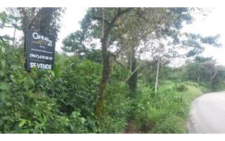 Foto de terreno habitacional en venta en  , palenque centro, palenque, chiapas, 1798931 No. 03