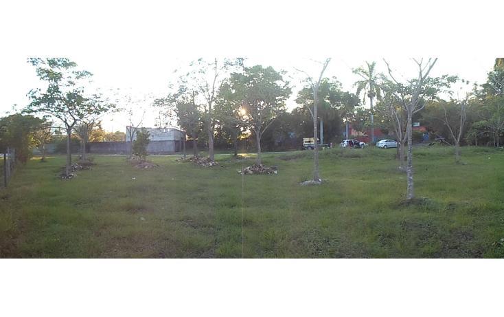 Foto de rancho en venta en  , palenque, palenque, chiapas, 1128631 No. 02