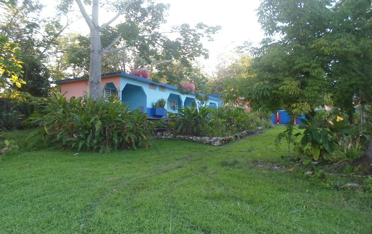 Foto de rancho en venta en  , palenque, palenque, chiapas, 1128631 No. 03