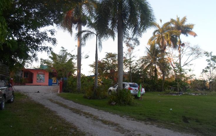 Foto de rancho en venta en  , palenque, palenque, chiapas, 1128631 No. 04