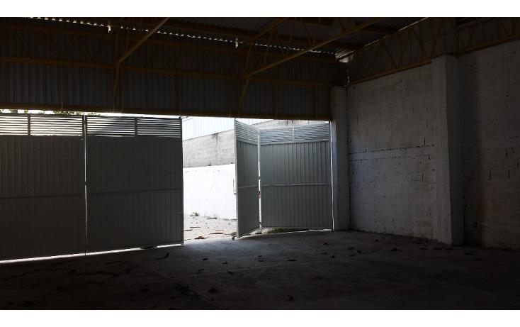 Foto de nave industrial en renta en  , pallas, carmen, campeche, 1192319 No. 05