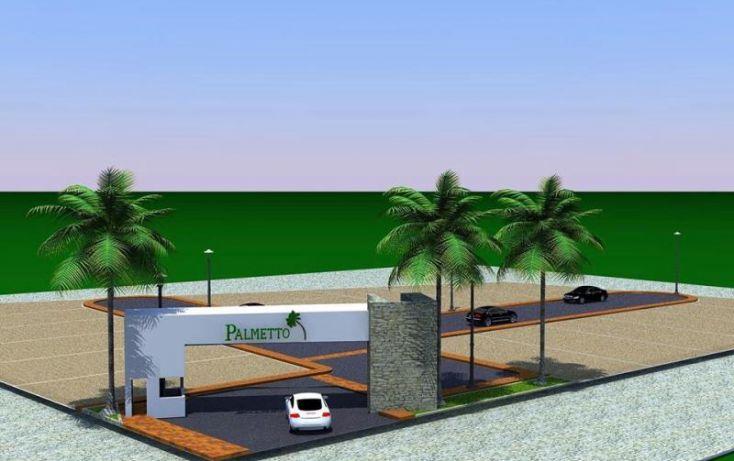 Foto de terreno habitacional en venta en palmetto, fortín de las flores centro, fortín, veracruz, 443447 no 03