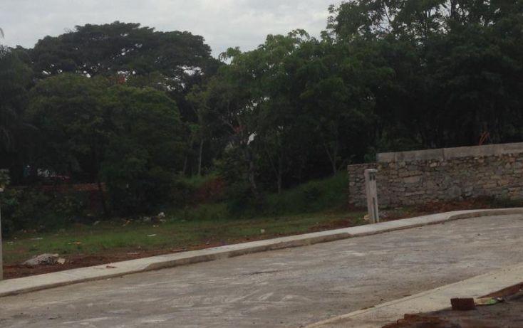 Foto de terreno habitacional en venta en palmetto, fortín de las flores centro, fortín, veracruz, 443447 no 18