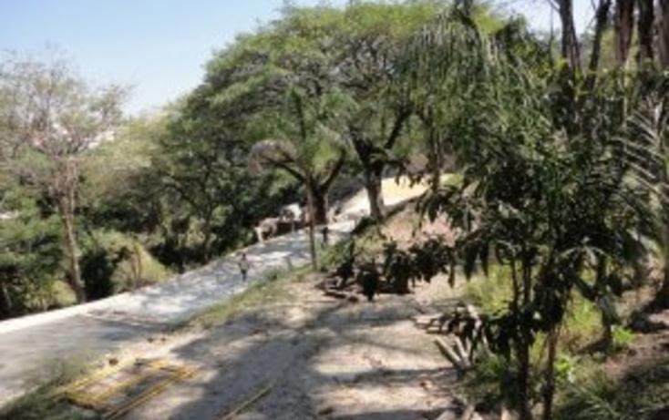 Foto de terreno habitacional en venta en palmira 99 , palmira tinguindin, cuernavaca, morelos, 2011264 No. 04