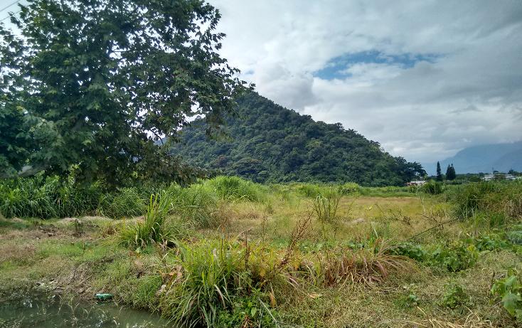 Foto de terreno comercial en venta en  , palmira, orizaba, veracruz de ignacio de la llave, 1316051 No. 01