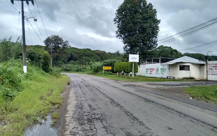 Foto de terreno comercial en venta en  , palmira, orizaba, veracruz de ignacio de la llave, 1316051 No. 02
