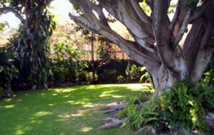 Foto de casa en renta en  , palmira tinguindin, cuernavaca, morelos, 1060307 No. 02