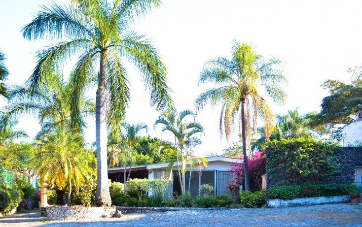 Foto de terreno habitacional en venta en, palmira tinguindin, cuernavaca, morelos, 1183863 no 05