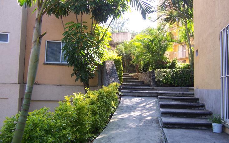 Foto de departamento en renta en  , palmira tinguindin, cuernavaca, morelos, 1303455 No. 12