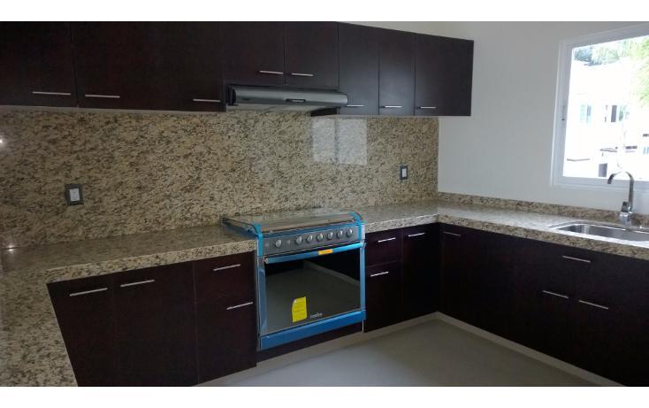 Foto de departamento en venta en  , palmira tinguindin, cuernavaca, morelos, 1438341 No. 02