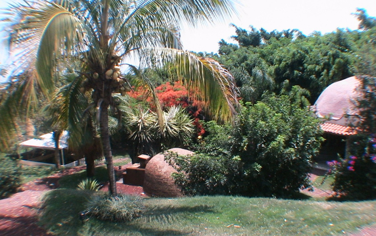 Foto de terreno comercial en venta en  , palmira tinguindin, cuernavaca, morelos, 1809692 No. 12