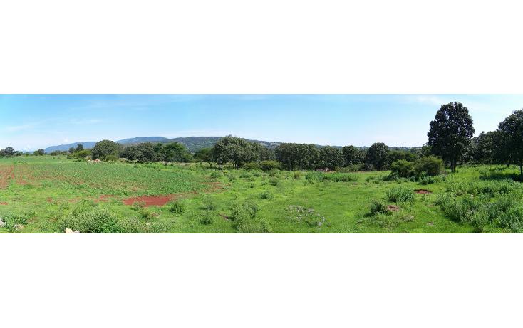 Foto de rancho en venta en  , palo alto, tecolotl?n, jalisco, 1514364 No. 14