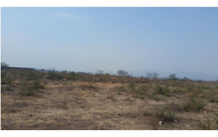 Foto de terreno comercial en venta en  , palo dulce, el salto, jalisco, 2015928 No. 01