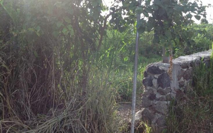 Foto de terreno habitacional en venta en  , palo escrito, emiliano zapata, morelos, 1395611 No. 02