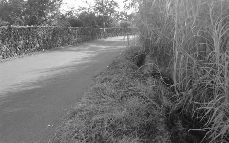 Foto de terreno habitacional en venta en  , palo escrito, emiliano zapata, morelos, 1395611 No. 03