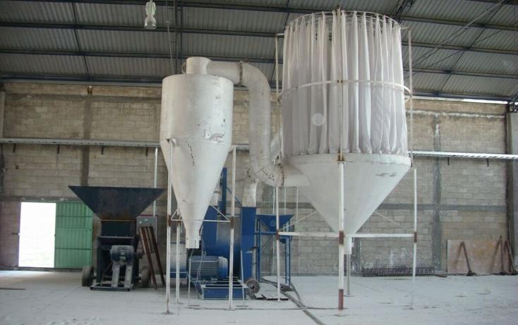 Foto de nave industrial en renta en  , palo gordo (ejido nopalillo), metepec, hidalgo, 1040403 No. 06