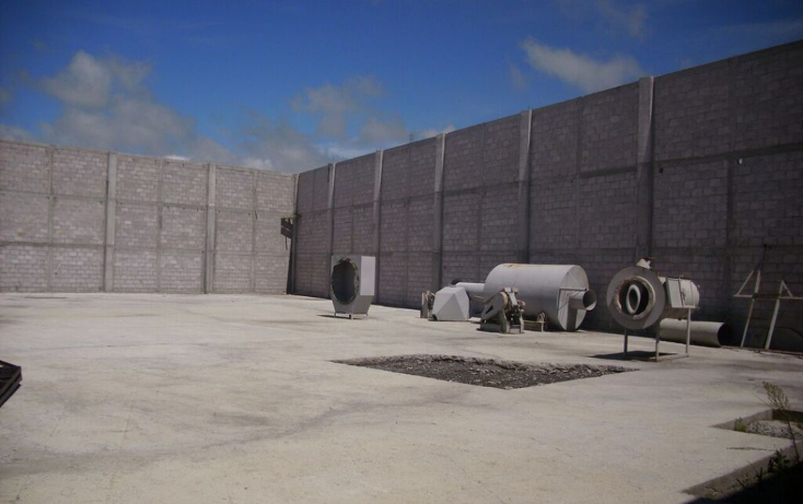 Foto de nave industrial en venta en  , palo gordo (ejido nopalillo), metepec, hidalgo, 1301155 No. 08