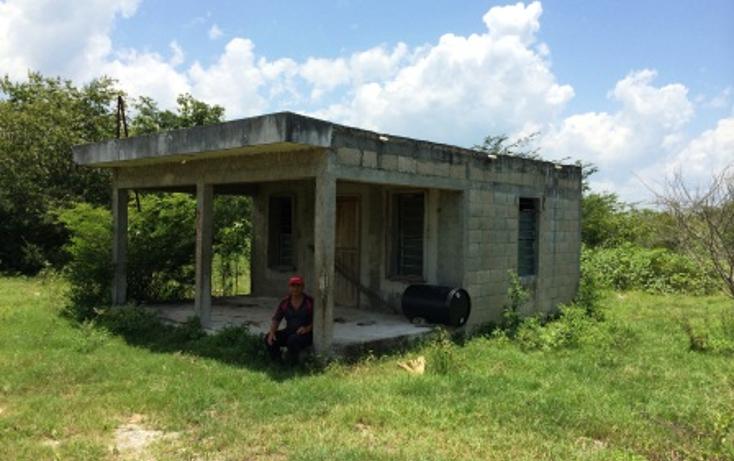 Foto de rancho en venta en  , panaba, panabá, yucatán, 1553036 No. 03