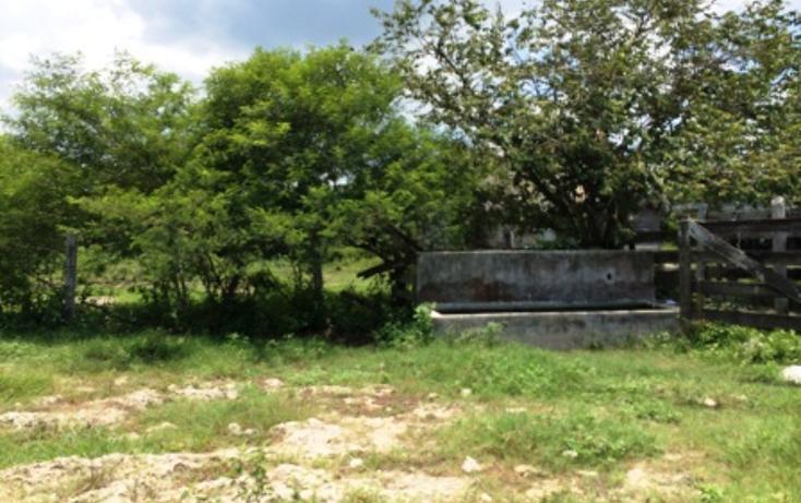 Foto de rancho en venta en  , panaba, panabá, yucatán, 1553036 No. 21