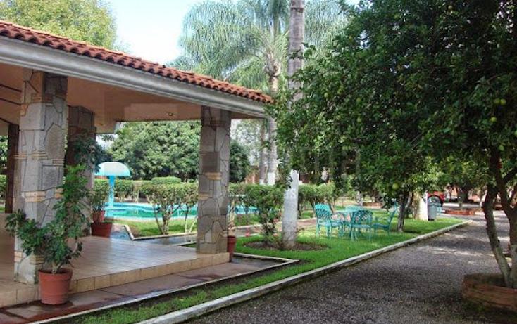 Foto de rancho en venta en  , pantanal, xalisco, nayarit, 1263743 No. 09
