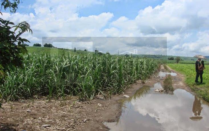 Foto de terreno habitacional en venta en  , pantanal, xalisco, nayarit, 1298501 No. 07
