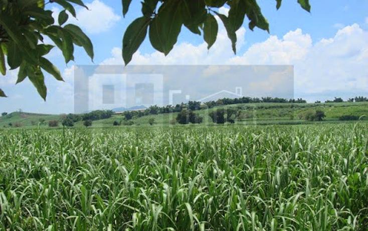 Foto de terreno habitacional en venta en  , pantanal, xalisco, nayarit, 1298501 No. 10