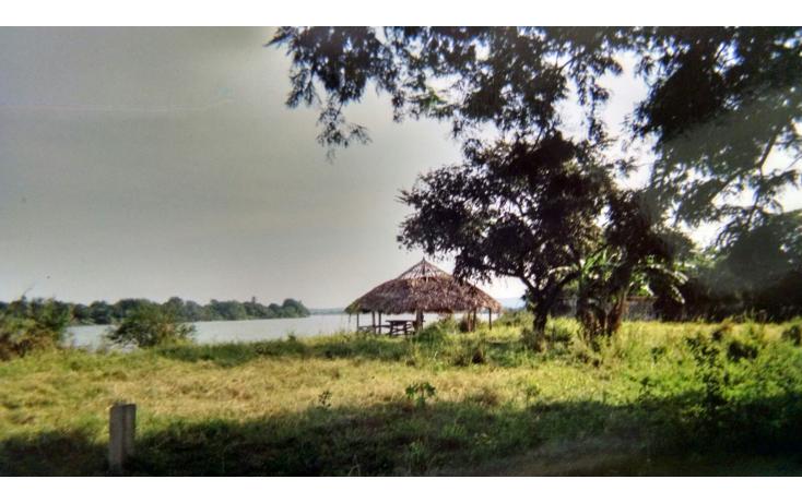 Foto de terreno habitacional en venta en  , panuco centro, pánuco, veracruz de ignacio de la llave, 1376627 No. 02