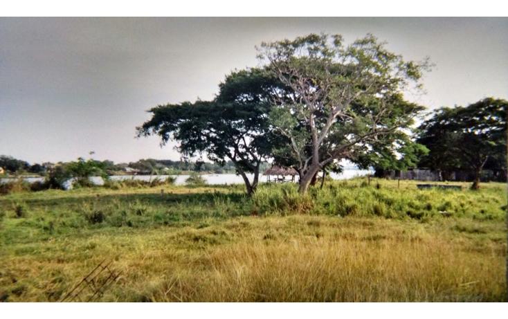 Foto de terreno habitacional en venta en  , panuco centro, pánuco, veracruz de ignacio de la llave, 1376627 No. 03