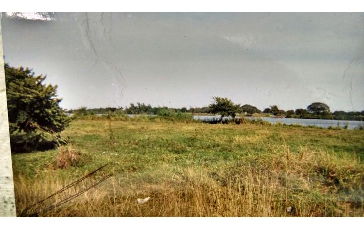 Foto de terreno habitacional en venta en  , panuco centro, pánuco, veracruz de ignacio de la llave, 1376627 No. 04