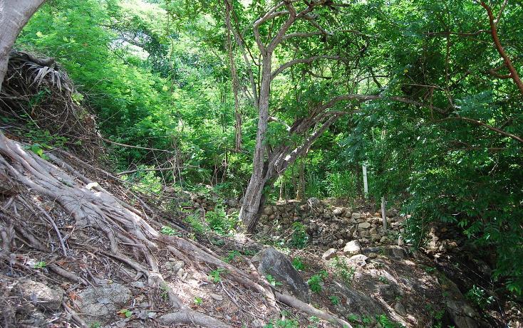 Foto de terreno habitacional en venta en papagayo , sayulita, bahía de banderas, nayarit, 498330 No. 13