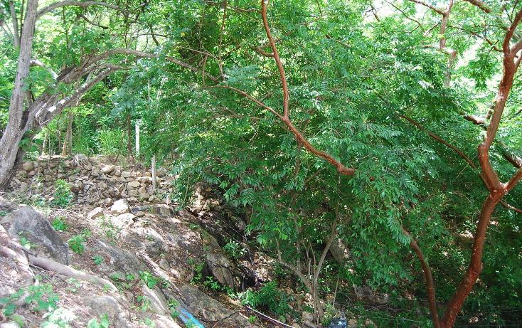 Foto de terreno habitacional en venta en papagayo , sayulita, bahía de banderas, nayarit, 498330 No. 15