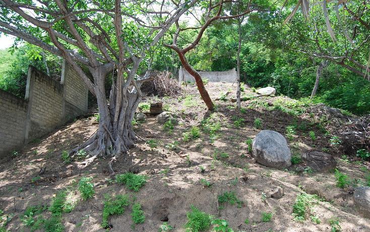 Foto de terreno habitacional en venta en papagayo , sayulita, bahía de banderas, nayarit, 498330 No. 21