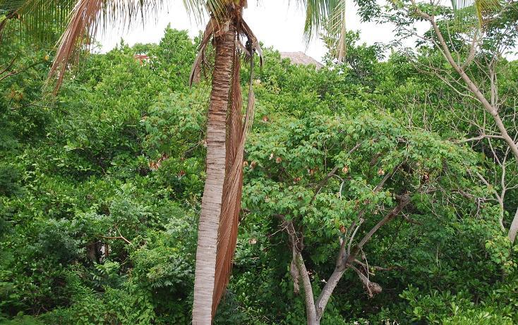 Foto de terreno habitacional en venta en papagayo , sayulita, bahía de banderas, nayarit, 498330 No. 43