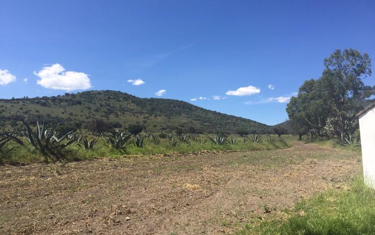 Foto de terreno industrial en venta en  , papalotla, papalotla, méxico, 1343729 No. 10