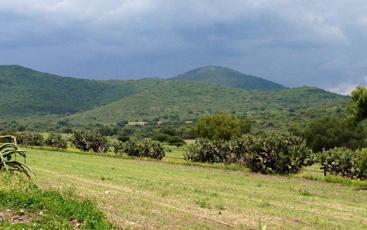 Foto de terreno industrial en venta en  , papalotla, papalotla, méxico, 1343729 No. 13