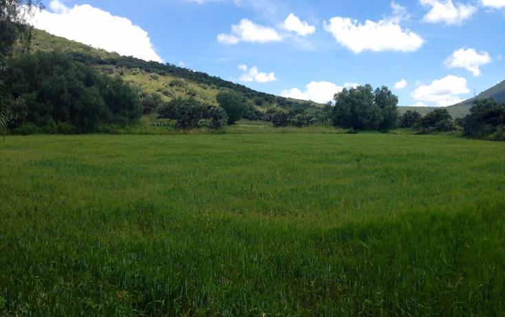 Foto de terreno industrial en venta en  , papalotla, papalotla, méxico, 1343729 No. 18