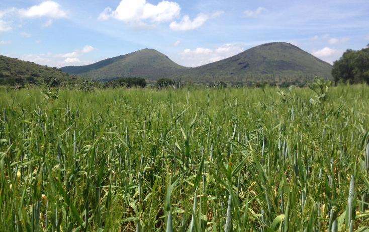 Foto de terreno industrial en venta en  , papalotla, papalotla, méxico, 1343729 No. 19
