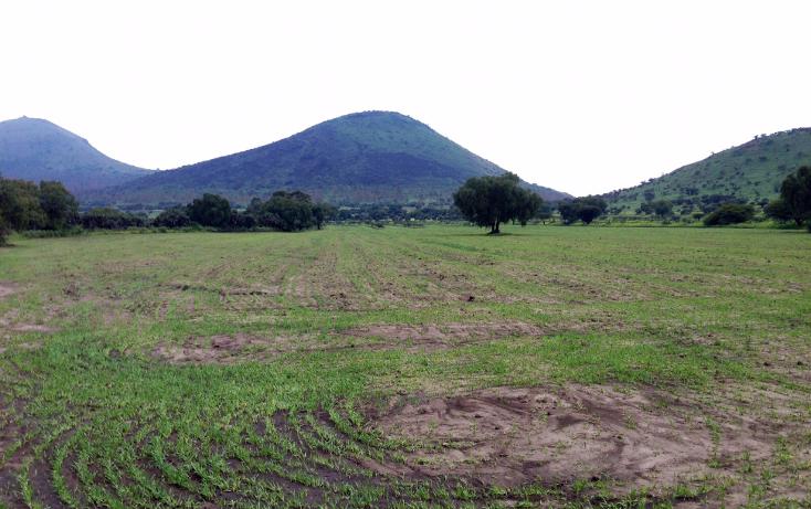 Foto de terreno industrial en venta en  , papalotla, papalotla, méxico, 1343729 No. 20