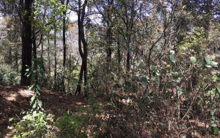 Foto de terreno habitacional en venta en paraiso 9 de septiembre, santa ana jilotzingo, jilotzingo, estado de méxico, 1769370 no 02