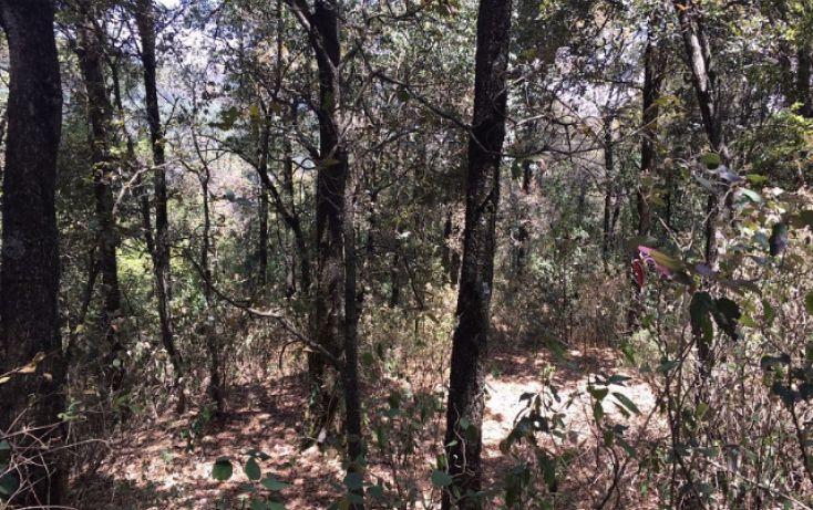 Foto de terreno habitacional en venta en paraiso 9 de septiembre, santa ana jilotzingo, jilotzingo, estado de méxico, 1769370 no 06