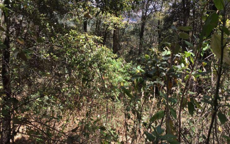 Foto de terreno habitacional en venta en paraiso 9 de septiembre, santa ana jilotzingo, jilotzingo, estado de méxico, 1769370 no 08