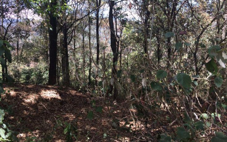 Foto de terreno habitacional en venta en paraiso 9 de septiembre, santa ana jilotzingo, jilotzingo, estado de méxico, 1769370 no 09