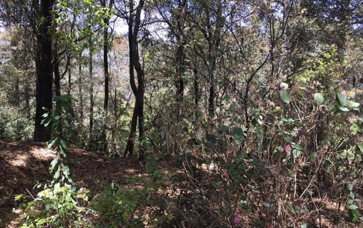 Foto de terreno habitacional en venta en paraiso (9 de septiembre) , santa ana jilotzingo, jilotzingo, méxico, 1769370 No. 02